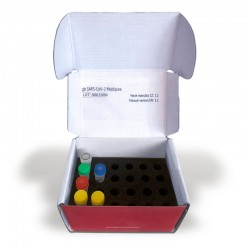 PCR KIT (200UDS)